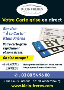 Carte grise wissembourg garage klein fr res for Garage pour carte grise